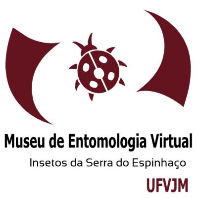 Museu de Entomologia Virtual UFVJM - Insetos da Serra do Espinhaço