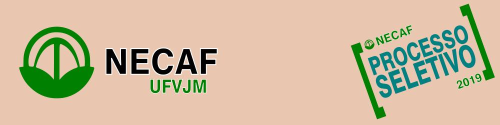 Processo-seletivo---NECAF-/-UFVJM---2019--10/05/2019
